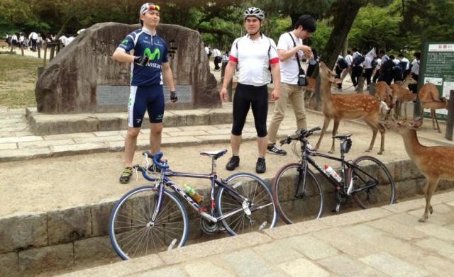 サイクリング 奈良公園