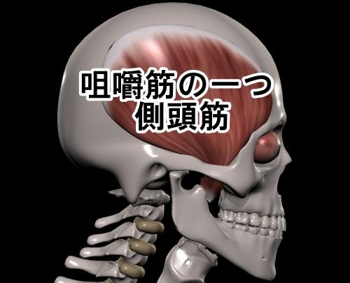 咀嚼筋 側頭筋 顎関節症